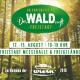 Wald_Freistadt_250